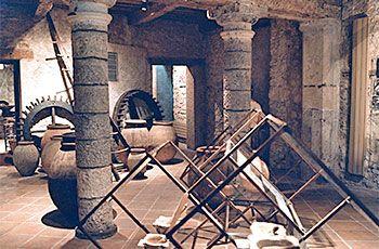 Musées en Dracénie du 23 au 31 juillet